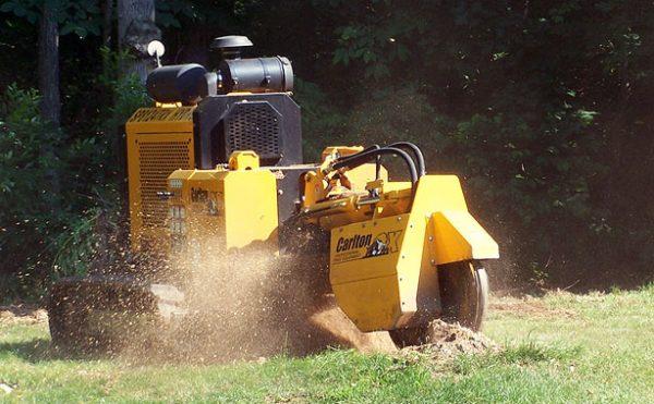 Carlton Stump Cutters - Saunders Equipment