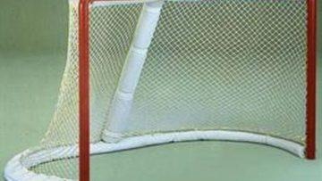 Professional Hockey Nets